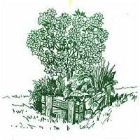 Starostlivosť a údržba okrasných záhrad
