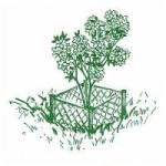 ochrana rastlin