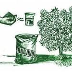 hnojenie rastlin