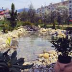 zahradne jazierko s vodopadom