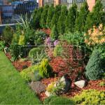 vysadba okrasneho zahonu