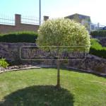 udrzba a servis zahrady