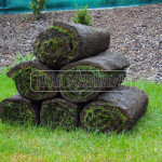 travnikove koberce