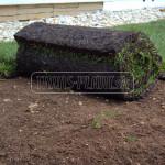 travnikova madcina