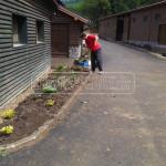 vysadba kvetinoveho zahona