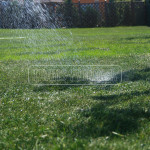 zavlaha travnika